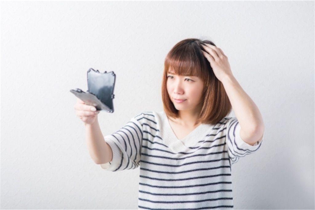 f:id:kawanabehiroki:20180812105450j:image