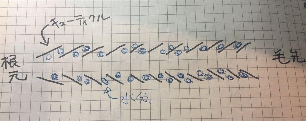 f:id:kawanabehiroki:20180815120128j:image