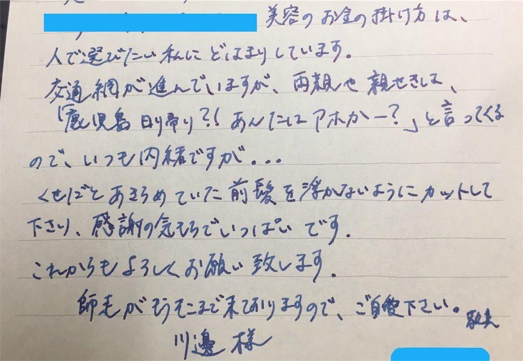 f:id:kawanabehiroki:20181128124206j:image