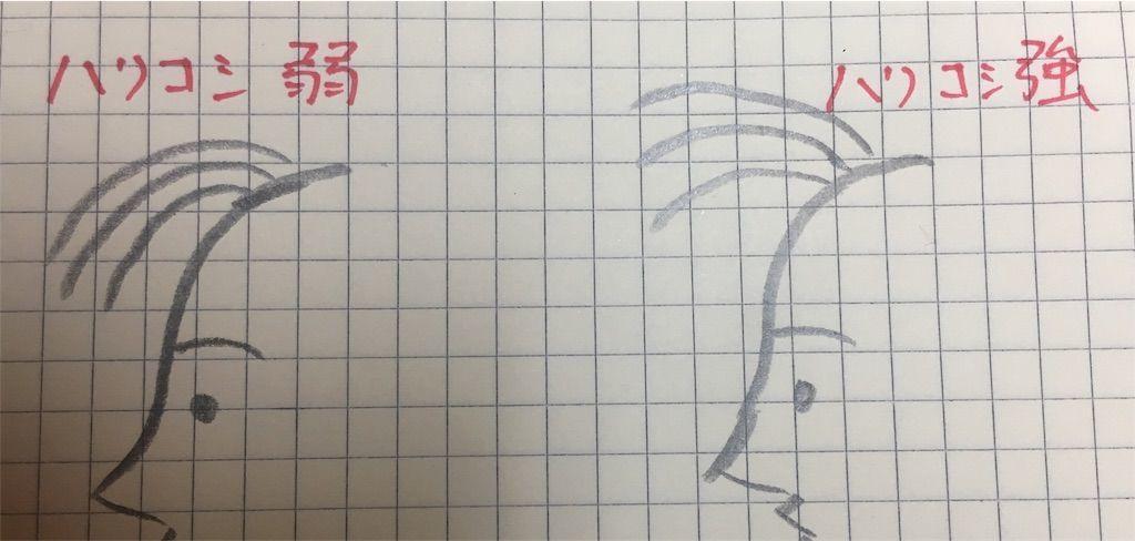 f:id:kawanabehiroki:20181205134157j:image