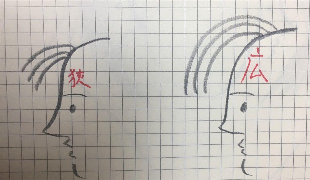 f:id:kawanabehiroki:20181205134752j:image