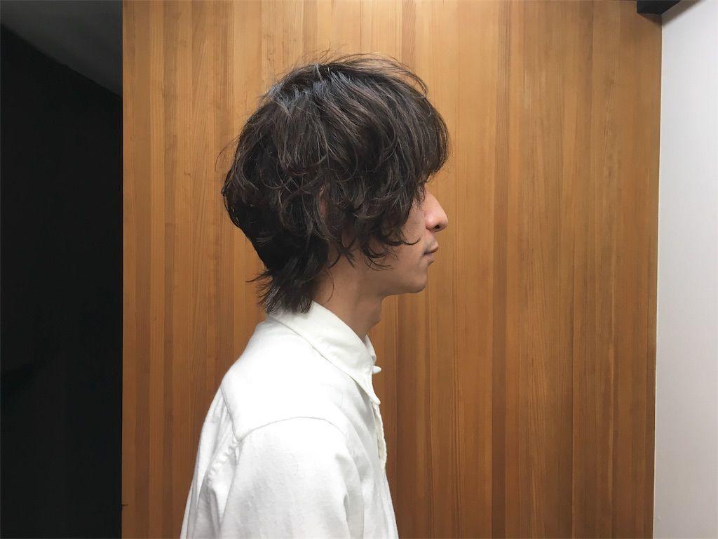 f:id:kawanabehiroki:20190113144727j:image