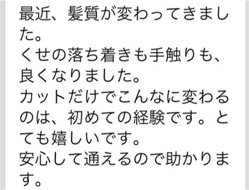 f:id:kawanabehiroki:20190205134002j:image