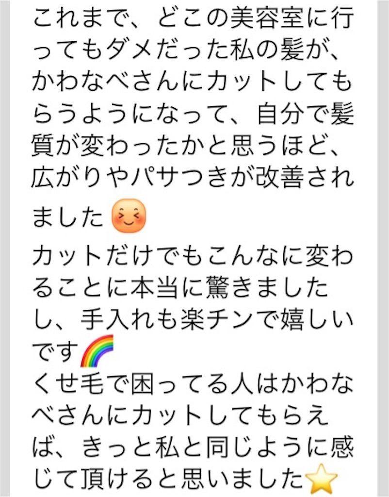 f:id:kawanabehiroki:20190313100656j:image