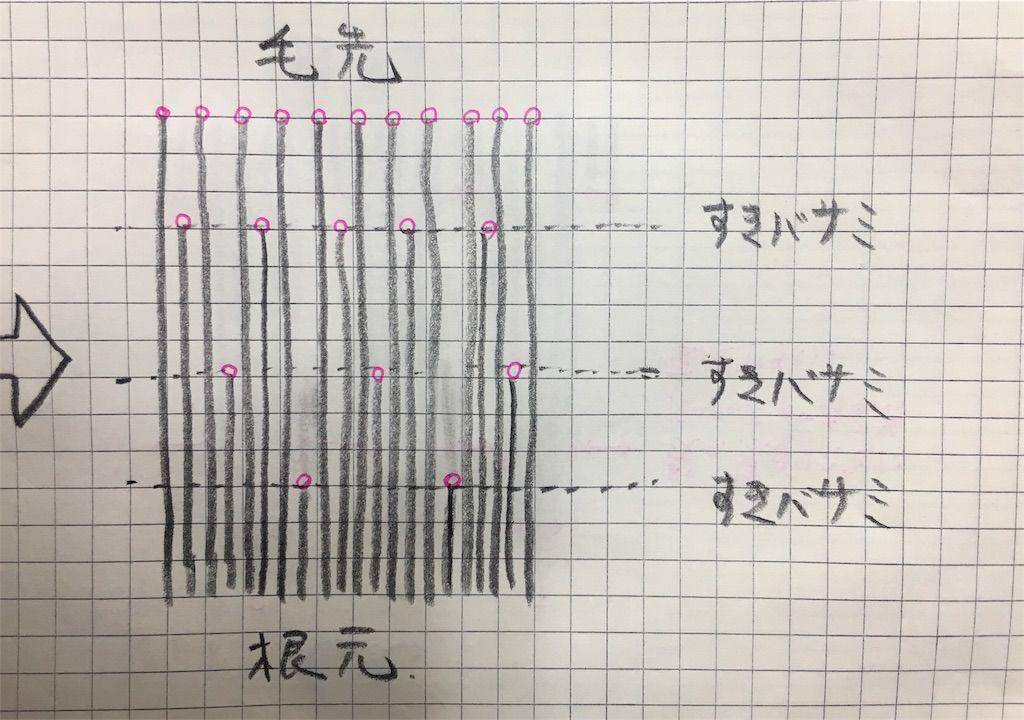 f:id:kawanabehiroki:20190320155935j:image