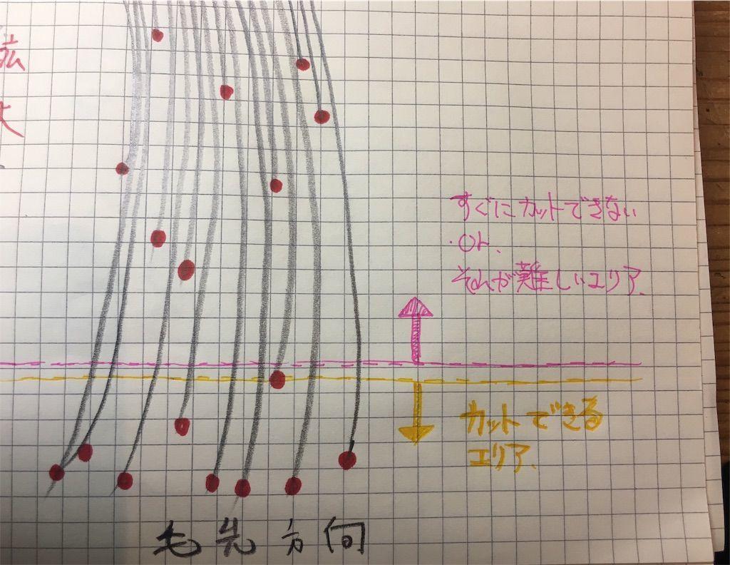 f:id:kawanabehiroki:20190410131259j:image