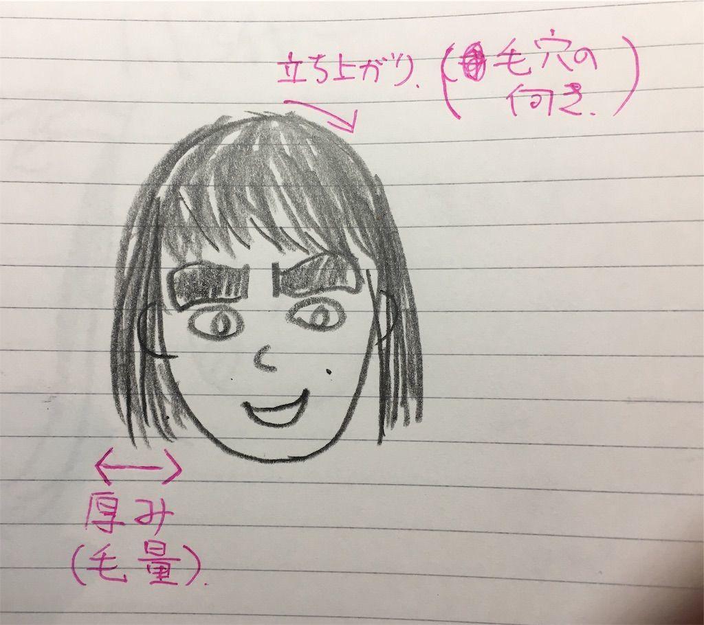 f:id:kawanabehiroki:20190517131244j:image