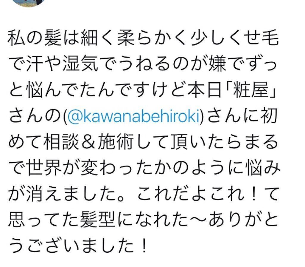 f:id:kawanabehiroki:20190529100535j:image