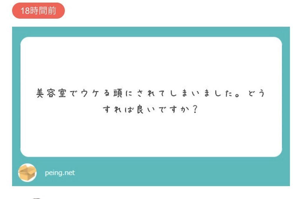 f:id:kawanabehiroki:20190602133133j:image