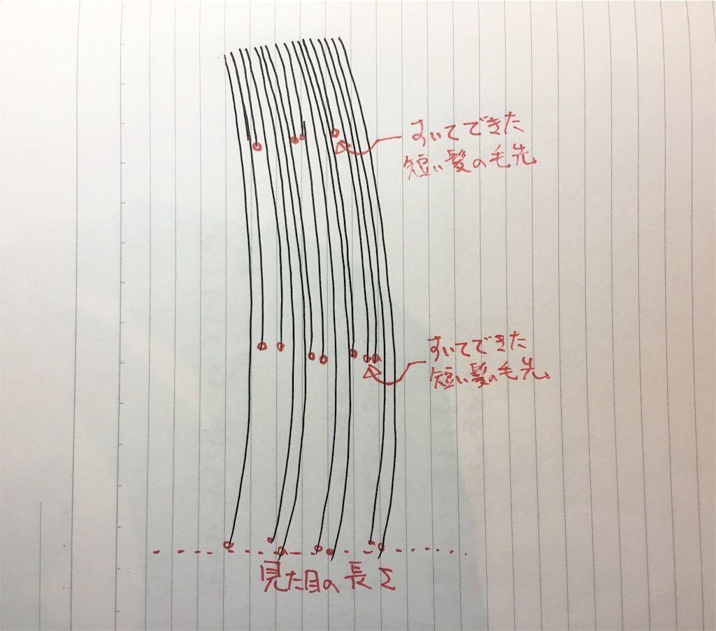 f:id:kawanabehiroki:20190605135314j:image