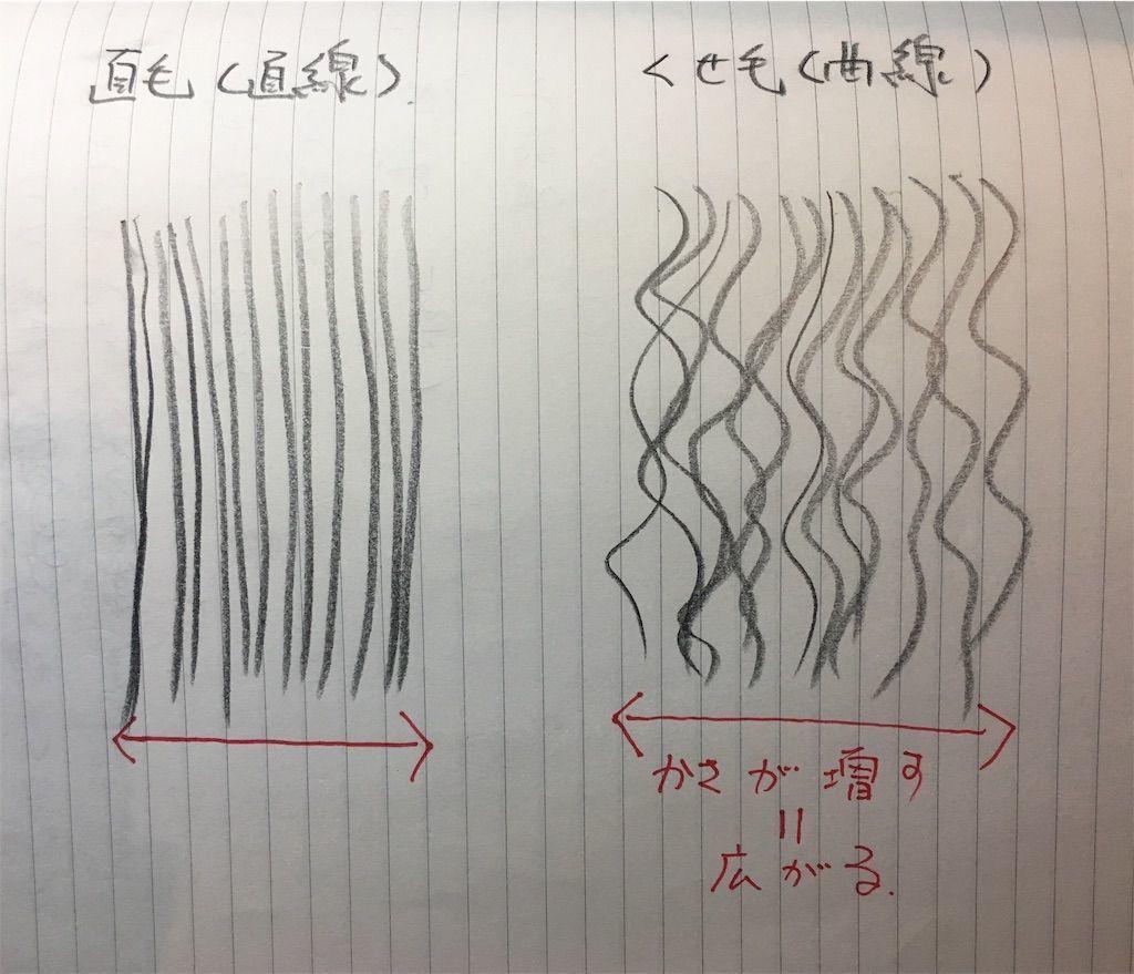 f:id:kawanabehiroki:20190704171009j:image
