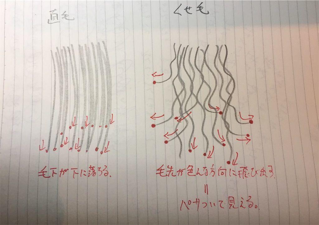 f:id:kawanabehiroki:20190704171520j:image
