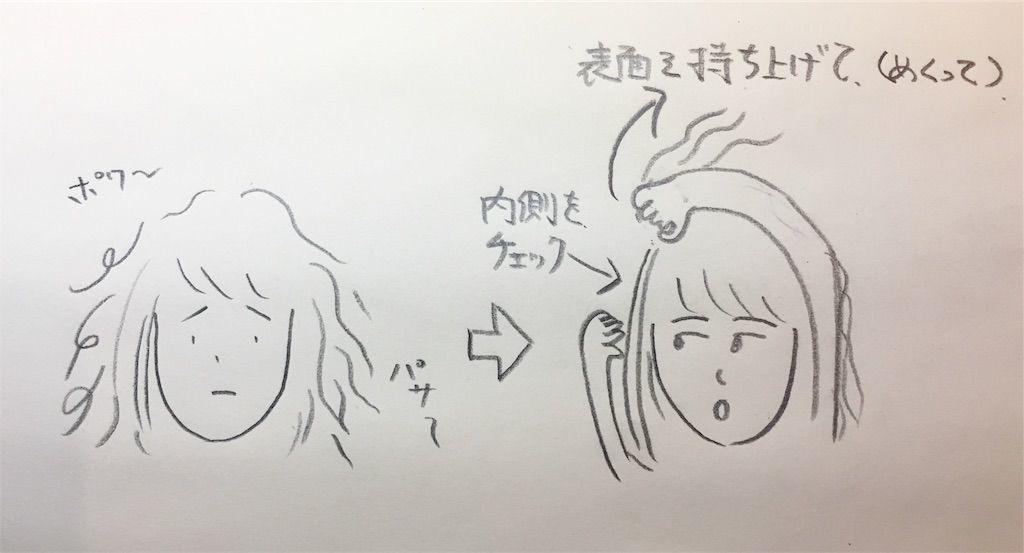 f:id:kawanabehiroki:20190808090326j:image