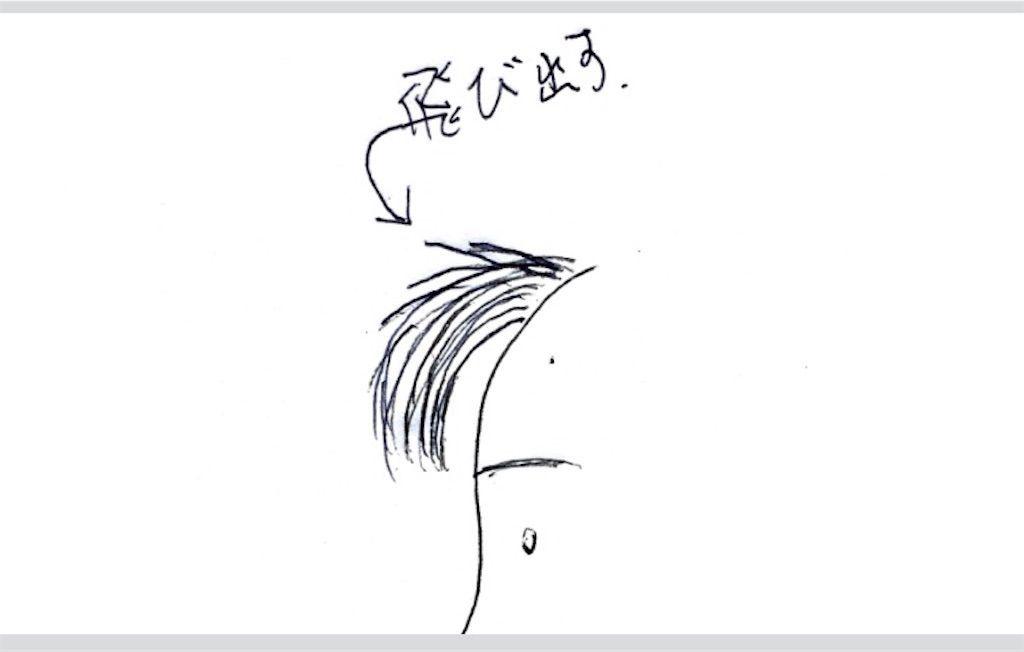 f:id:kawanabehiroki:20200208133912j:image