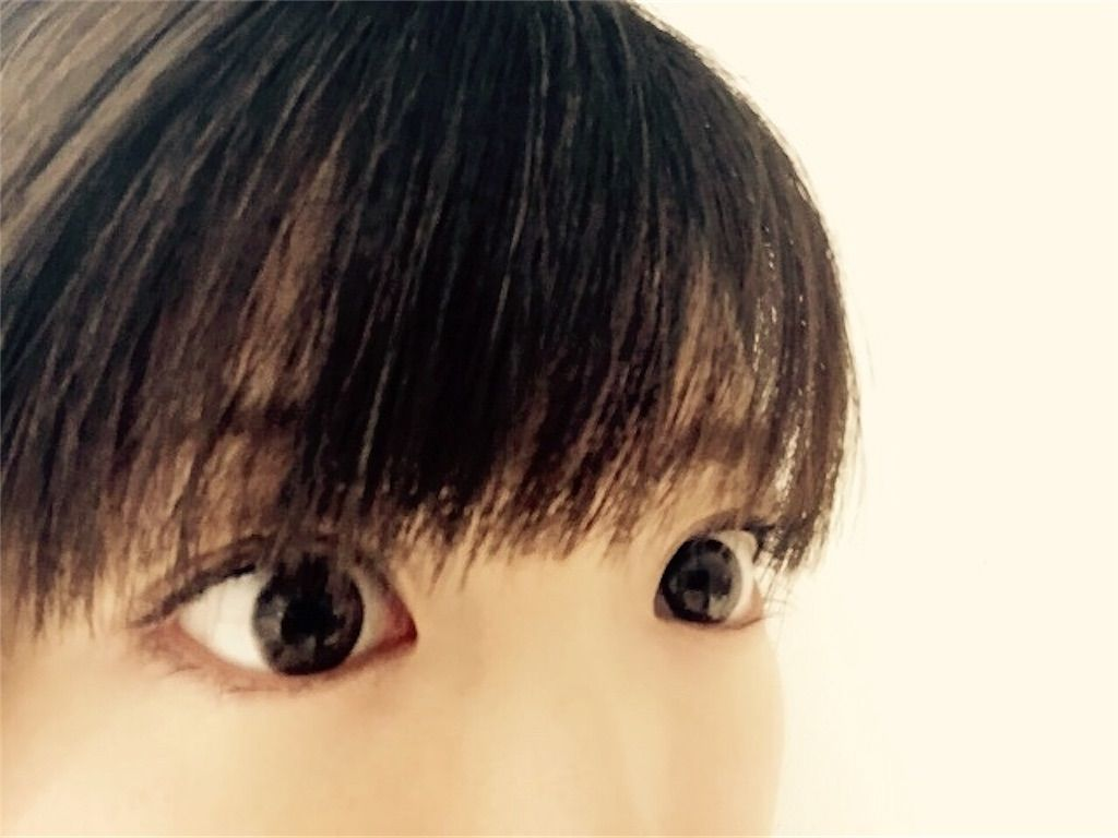 f:id:kawanabehiroki:20200208144800j:image