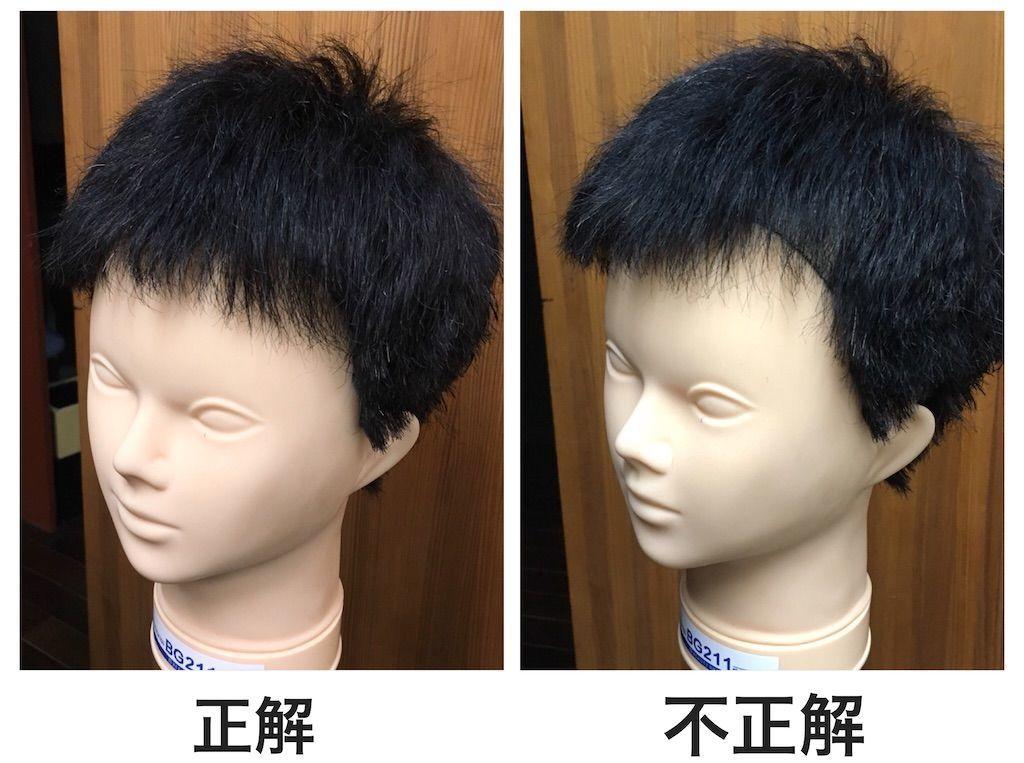 f:id:kawanabehiroki:20201106181622j:image