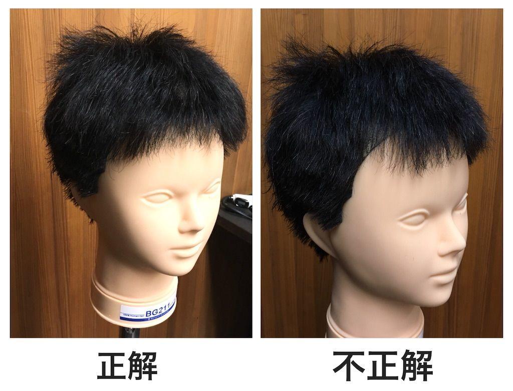 f:id:kawanabehiroki:20201106181626j:image
