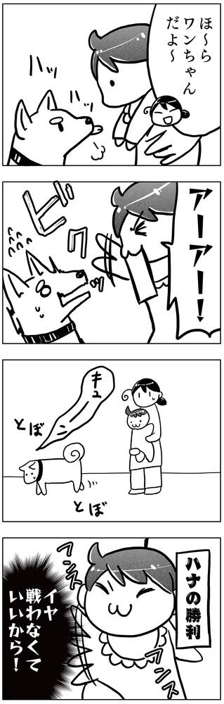 f:id:kawanaiseikatsu:20190124094716j:plain