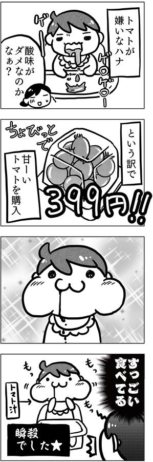 f:id:kawanaiseikatsu:20190613205937j:plain
