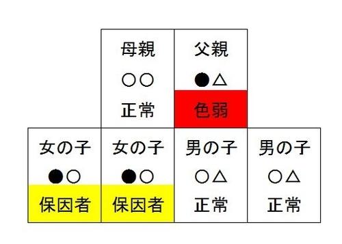 f:id:kawanaiseikatsu:20200621220443j:plain