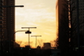 12/19(月) 【東京都新宿区西新宿】 「新宿」