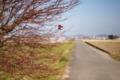 01/03(火) 【愛媛県伊予市下三谷】 「晴れ」 V35
