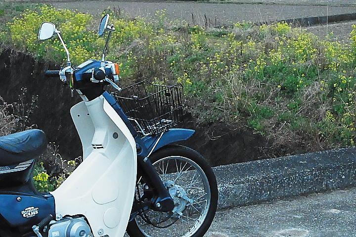 02/22(水)【愛媛県伊予市下三谷】  「畦道」