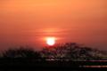 03/01(水)【愛媛県松山市西垣生町】  「太陽 夕」