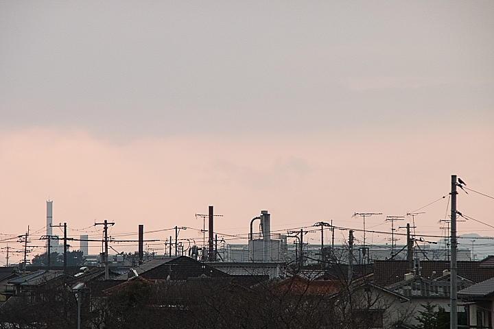 03/27(月)【愛媛県松山市西垣生町】  「宵」