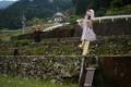 06/18(日)【愛媛県喜多郡内子町北表】  「案山子」  V35