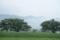 06/27(火 )【愛媛県伊予市下三谷】  「梅雨」  Rx