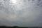 09//09(土)【愛媛県伊予市下三谷】  「うろこ雲」  Rx