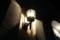 11//07(火)【山口県岩国市麻里布町】  「灯り」  Rx