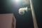 11//14(火)【山口県岩国市麻里布町】  「カメラ」  Rx