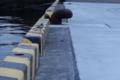 2/14(水)【山口県岩国市飯田町】 「鳥」  Rx