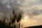 5/1(火)【愛媛県伊予郡松前町大溝】 「麦」 Rx