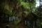 5/2(水)【兵庫県丹波市氷上町香良】 「朝山不動尊」 V15