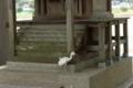 7/28(土)【山口県岩国市楠町】 「参拝」  Rx