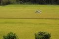 9/23(日)【愛媛県西予市野村町野村】 「収穫」 V50