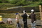 4/30(火)【愛媛県伊予市双海町上灘】 「案山子」 V35