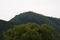 6/2(日)【山口県岩国市玖珂町】 「鞍掛山」 V75