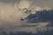 9/3(火)【山口県岩国市日の出町】 「飛行機」 Rx6