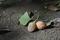 9/23(月)【愛媛県松山市北吉田町】 「銀杏」 Rx6