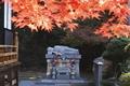 11/23(土)【山口県岩国市室の木町】 「涅槃仏」 V75