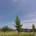 5/21(木)【広島県大竹市東栄】 「青空」 FV