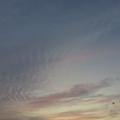 5/28(木)【山口県岩国市日の出町】 「夕景」 FV