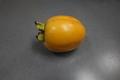 10/24(土)「柿」 Rx6
