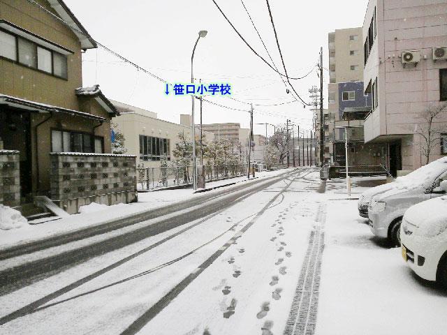 f:id:kawasaki-f:20170123114719j:plain