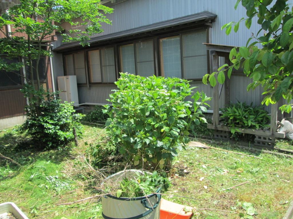 f:id:kawasaki-f:20170622174843j:plain