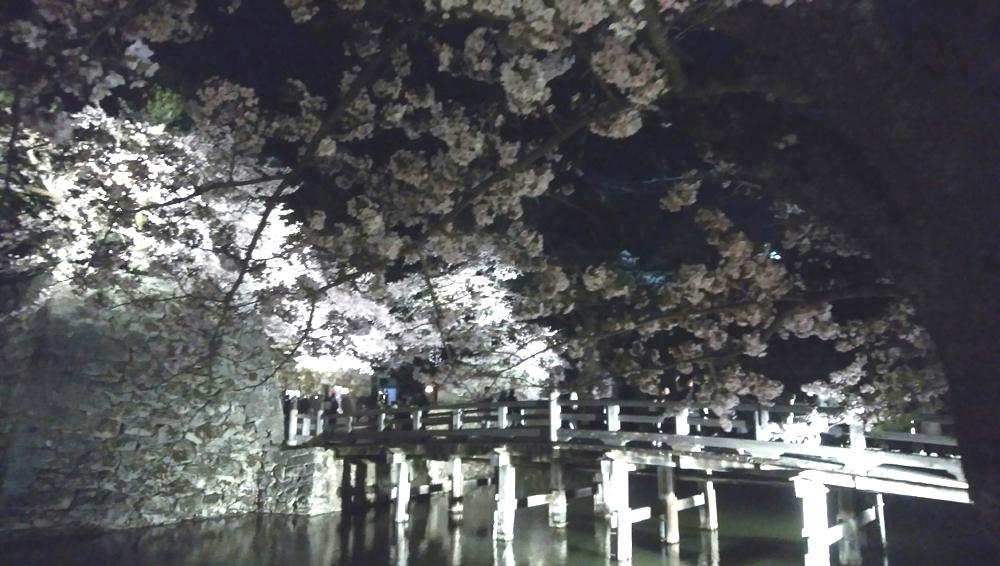 f:id:kawashima-kihiro:20190413195901j:plain